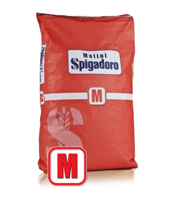 farina manitoba KG.25 spigadoro